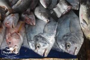 Loại cá khau cho nước mắm có chất lượng khác nhau.